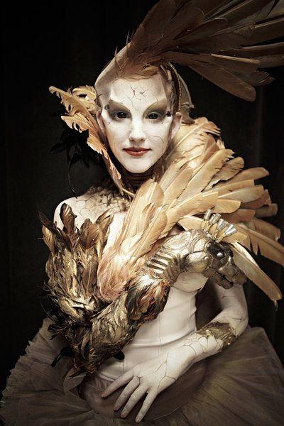 Tate Steinsiek's Swan