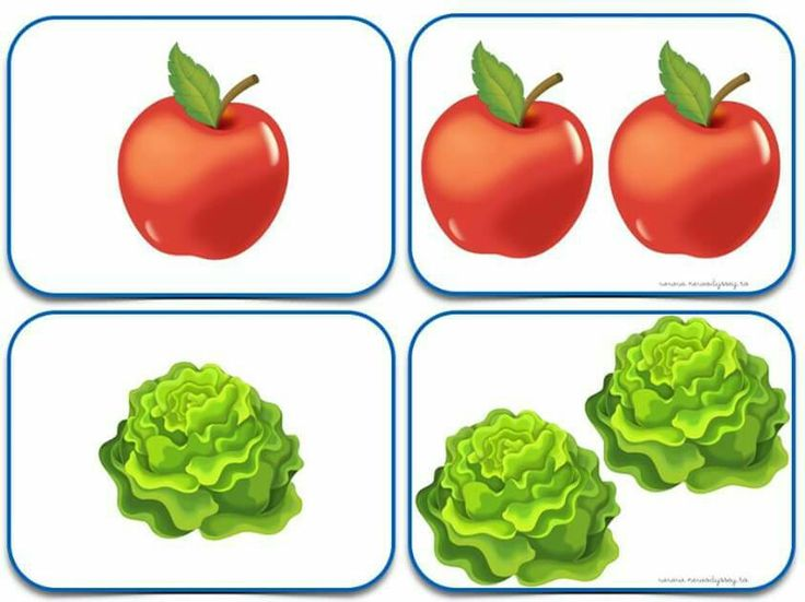 (2015-06) Tomat, salathoved