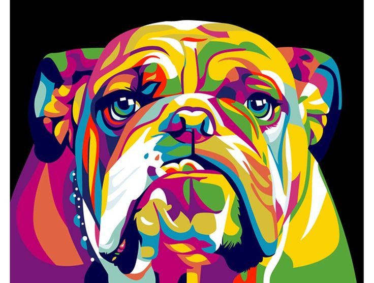 """Rainbow English bulldog '-"