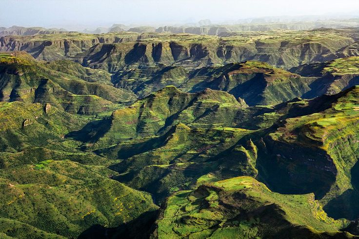 The #Simien Mountains, #Ethiopia A World Heritage Site and national park, with the tallest peak Ras Dashen reaching 4,619 metres, this region is best known as the habitat of Gelada baboons and Ethiopian wolves #