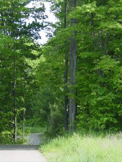 Aspen Park - great paved and unpaved trails in Gaylord, MI