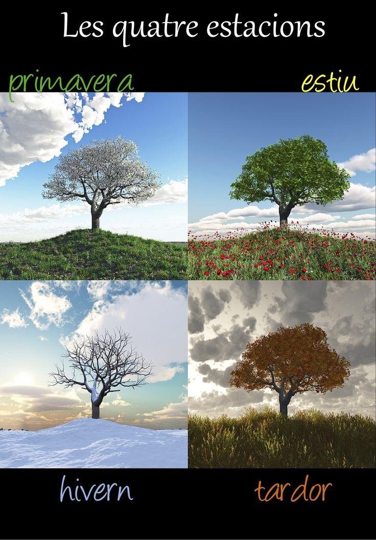 Les 4 estacions / the 4 seasons