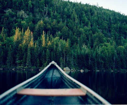 Canoe and aspens.