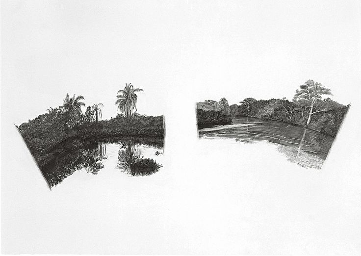 francisco faria - dispersão flexuosa-correnteza (flexuosa spread: stream,) 1998. graphite on paper; 70x100 cm.
