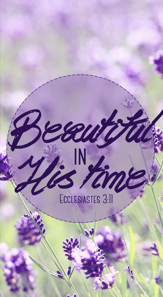He has made everything beautiful in its time. Also, he has put eternity into man's heart, yet so that he cannot find out what God has done from the beginning to the end. - Ecclesiastes 3:11