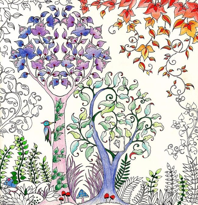 Enchanted Forest Fort Enchante By Johanna Basford L Her First Colouring In Book For
