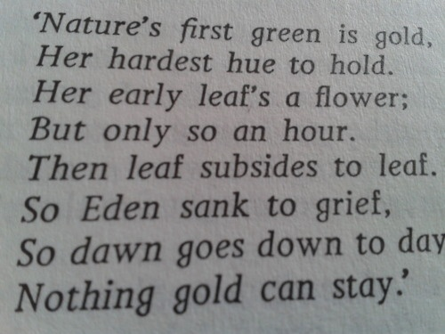the outsiders poem stay gold meaning