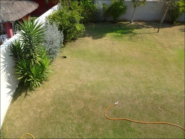 69 best ideas about mexican backyard on pinterest for Swimming pool conversion ideas