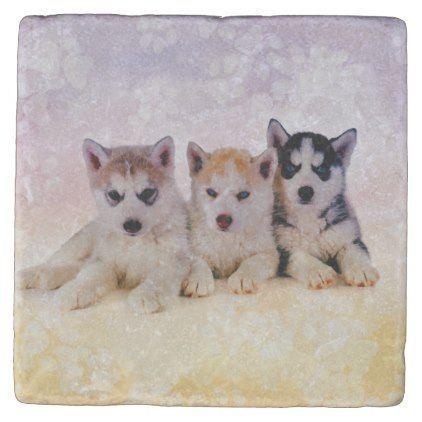 #Siberian Husky Puppies Stone Coaster – #siberian #huskie #puppy #huskies    – Siberian Husky