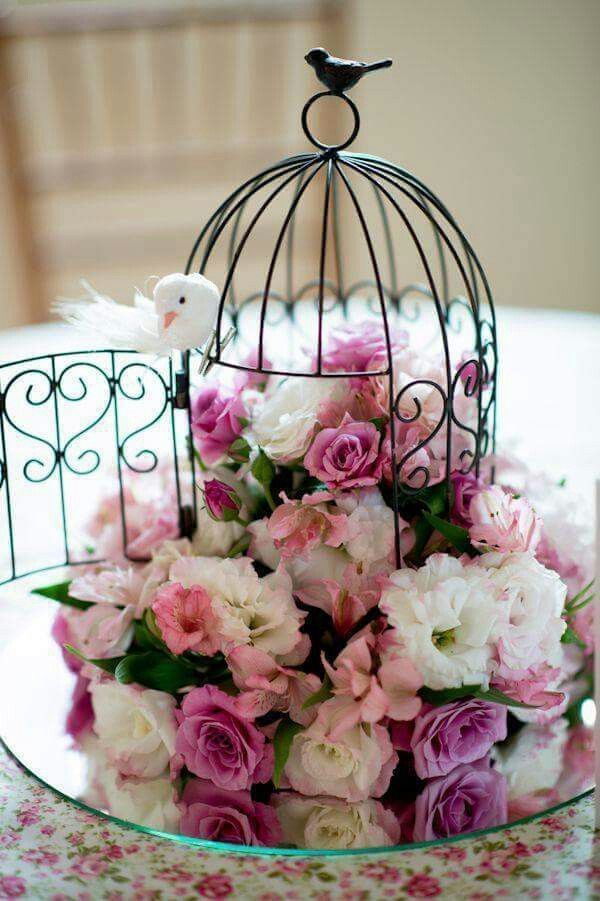 Bird cage arrangement