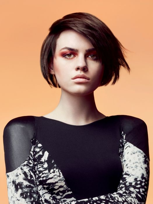 hair style for work 17 best images about hair sassoon on bobs 4339