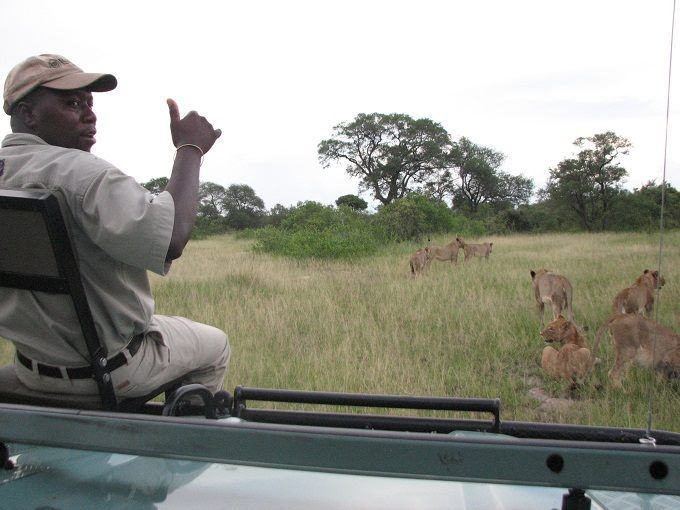 Game drive with Lukimbi ranger, Kruger National Park, http://www.pridelodges.com/index.php/game-lodges/classic/lukimbi/
