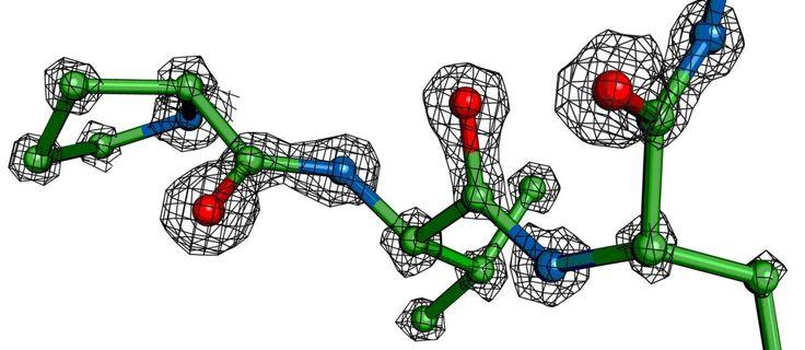 Eu já sonhei que era um elétron....tinha uma DR com o núcleo do átomo. Queria sair! kkkkk Belíssimo artigo!  Ilustração mostra a densidade de elétrons em torno dos átomos de parte de uma molécula de proteína presos em um estágio de transição de alta energia: marcas de processo fundamental para a vida Foto: Andrew E. Brereton/Universidade do Estado do Oregon