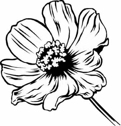 Real Looking Flower Coloring Pages