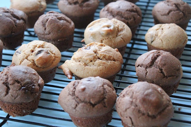 Peanut Butter and Dark Chocolate Mini Muffins. These are fantastic ...