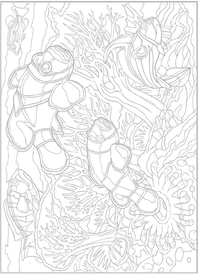 creative haven sea life paint by number by george toufexis dover publications coloring page - Paint Coloring