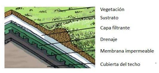 capas de techo vivo