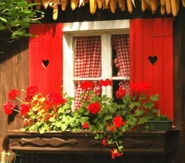 Red gingham curtains-red shutters-red geraniums                    Love the heart shutters!