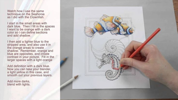 How to Use Colored Pencil by Jody Bergsma