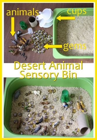 Desert Themed Activities for Kids