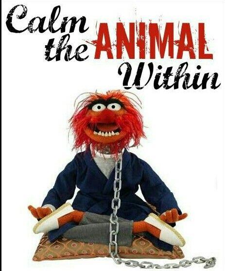 60 Best Muppet Fan Images On Pinterest: 60 Best My Monsters Images On Pinterest