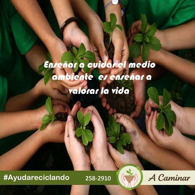 """Incentivemos el cuidado y protección del medio ambiente, todos debemos ser parte del cambio. Contáctenos : 258 - 2910 / Rpc. 998178541 http://acaminarperu.org/donaciones.html """"A caminar"""", reciclamos para ayudar"""