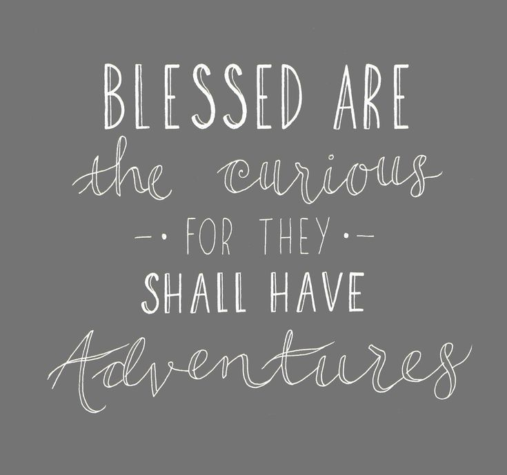 Quote: Blessed are the curious for they shall have ...