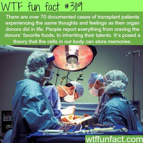 Amazing Funny: 78+ Images About Heart Transplant Nurse Coordinator CCTC