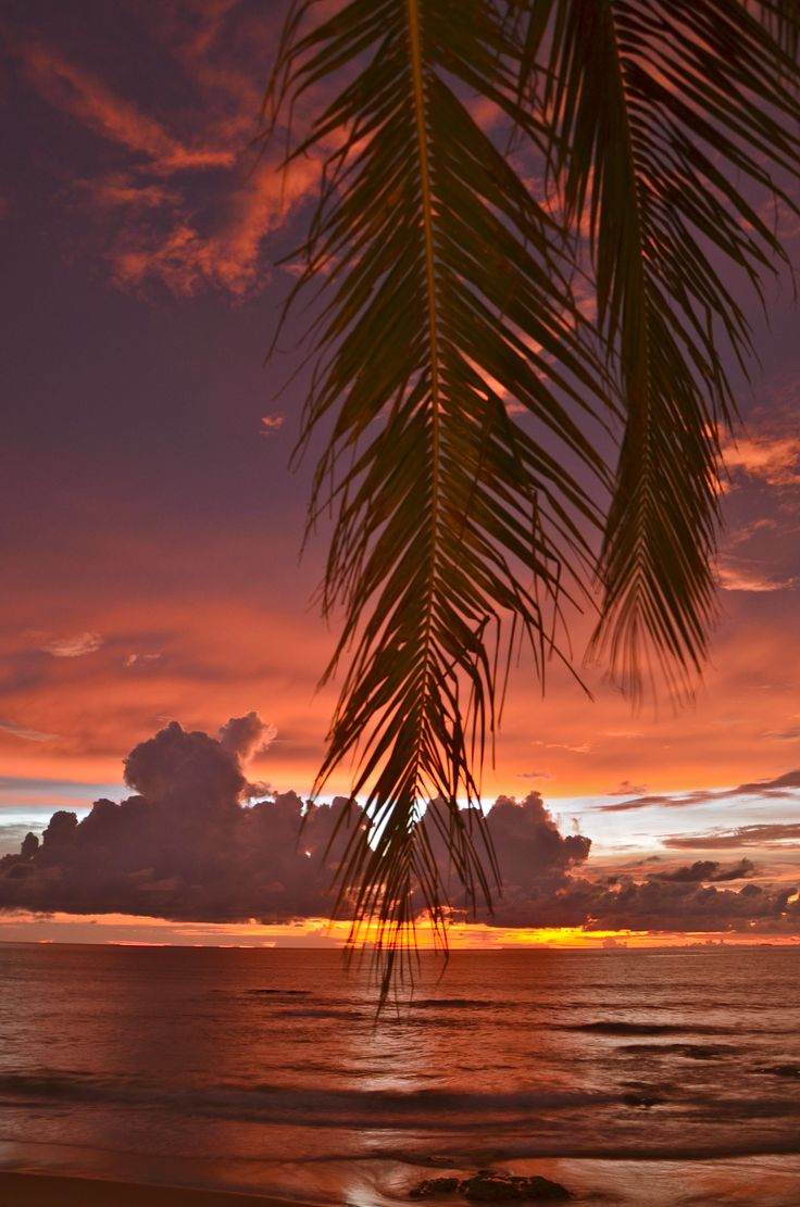 Really magic sunsets at Kamala Beach, Phuket, Thailand. With love from paradise!