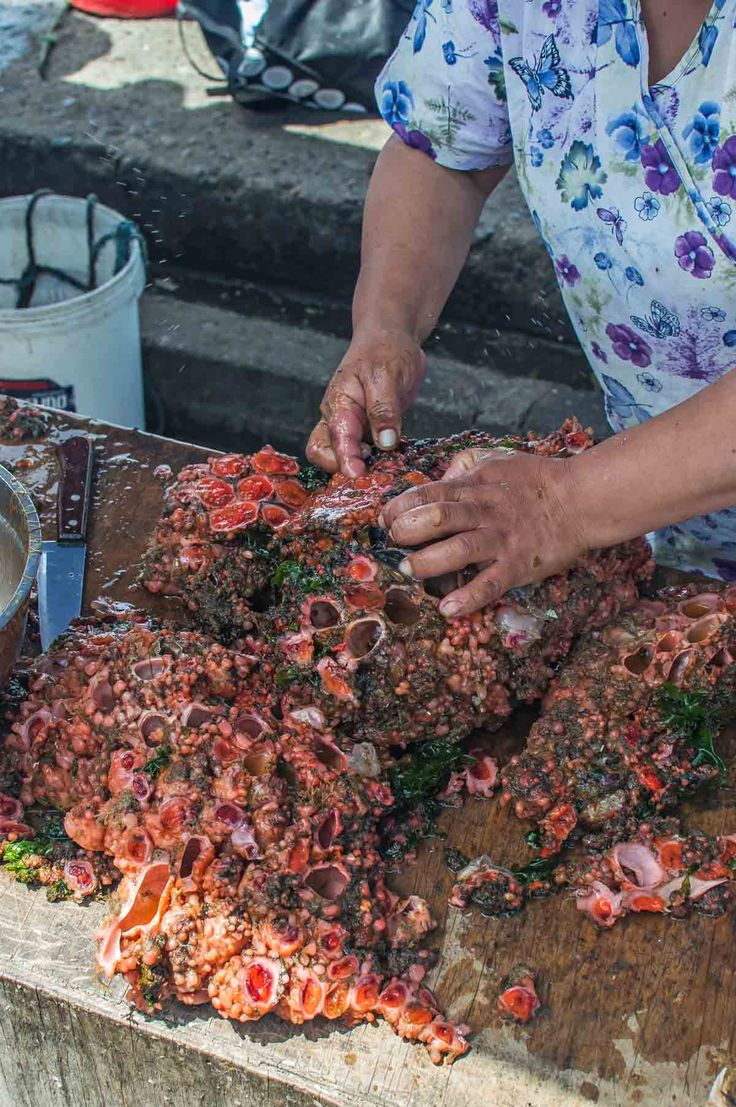 Sea squirts for sale in Dalacahue in on Chiloé Island | heneedsfood.com