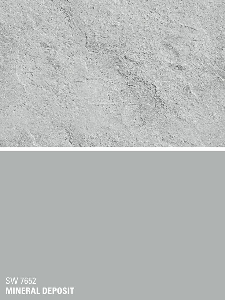 103 Best Gray The New Neutral Gray Paint Colors Images