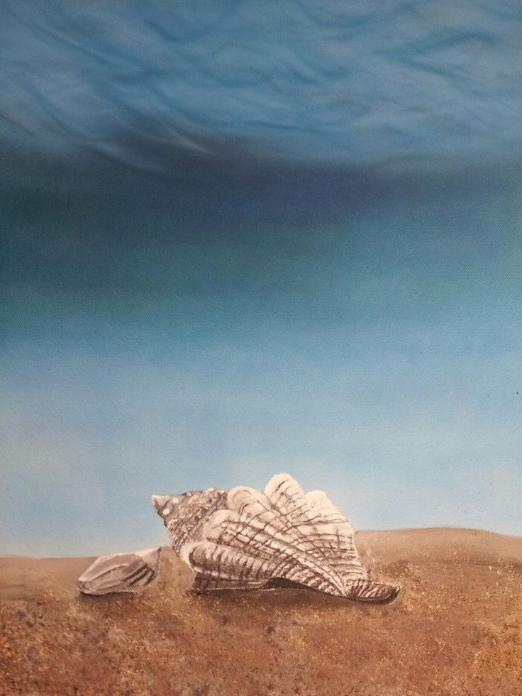 #shell #airbrush #acrylic