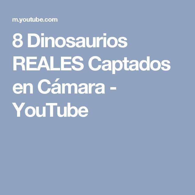 8 Dinosaurios REALES Captados en Cámara - YouTube