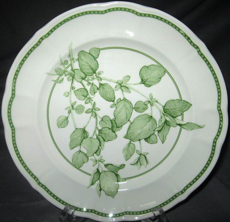 Richard Ginori Oregano Salad Plate