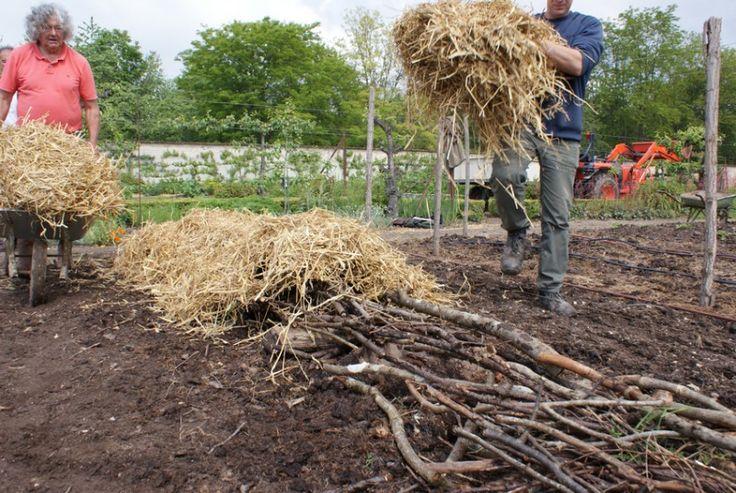 – Réaliser un potager en carré, façon permaculture | Ma hobby du verger