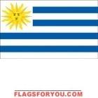 4' x 6' Uruguay High Wind, US Made Flag