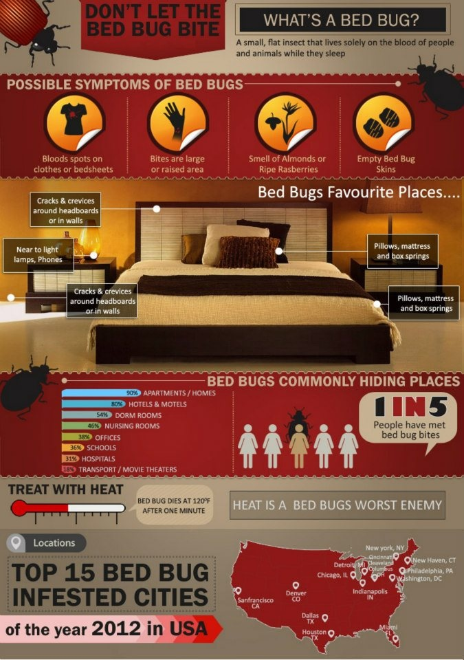 Don't Let The Bed Bugs Bite!!! Bed bugs, Bed bug bites