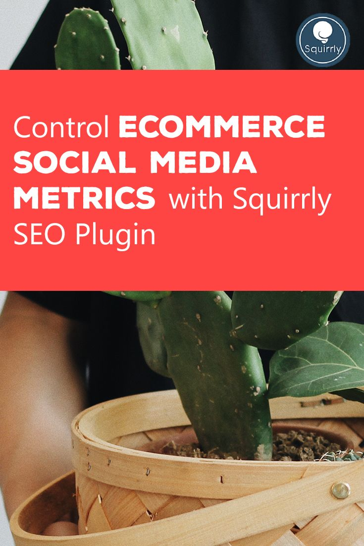 Squirrly 2017 is offering you a few valuable tricks to improve, control and leverage your eCommerce social media metrics.
