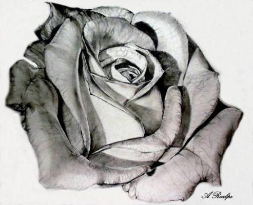Jak kreslit květiny - 2.díl - Grafické Kreslení