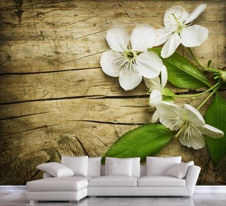 Άνθη κερασιάς | Φύση