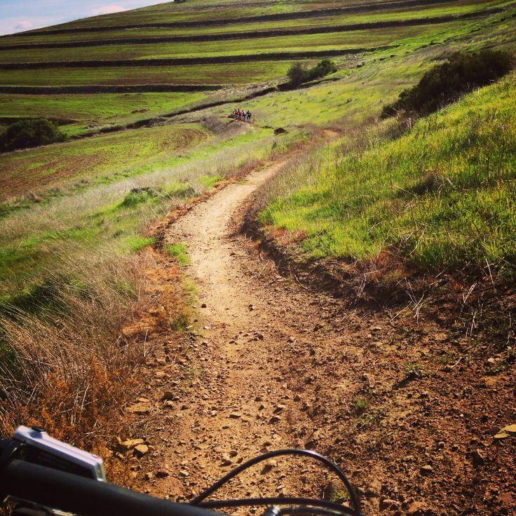 Hoegekraal trails...