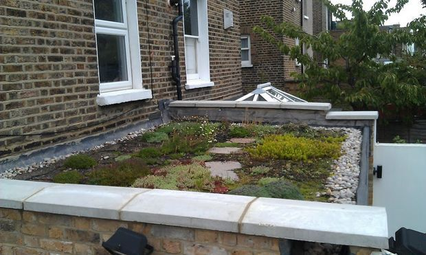 Image result for live roof extension