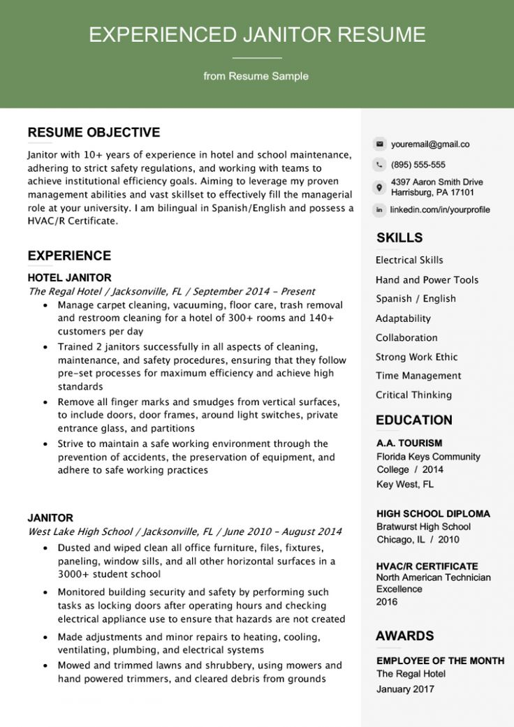 8 Resume Template With Photo Professional resume