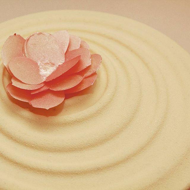 "Торт ""пломбир"" по рецепту @vera_nika37"
