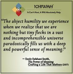 The abject humility we experience when we realize that we for The power of meaning crafting a life that matters