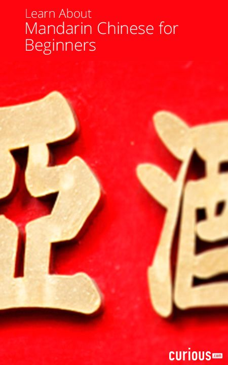 Mandarin Chinese can be one of the most difficult languages to learn, but in this beginner Chinese course, Lingo Videocast breaks down the fundamentals of learning how to speak Chinese in an easy-to-follow manner.