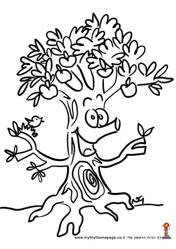 "7 fruits for tu bshvat coloring pages | דף צביעה לטו בשבט העץ הנדיב | ט""ו בשבט הגיע, חג היום לגן ..."