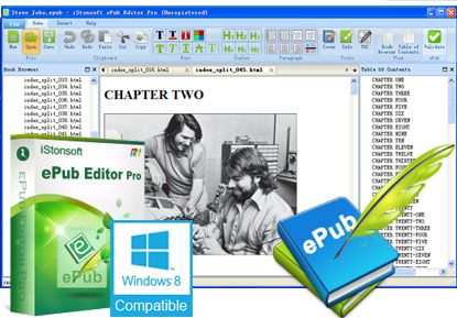 iStonsoft ePub Editor Pro 2.1.124 Full Download
