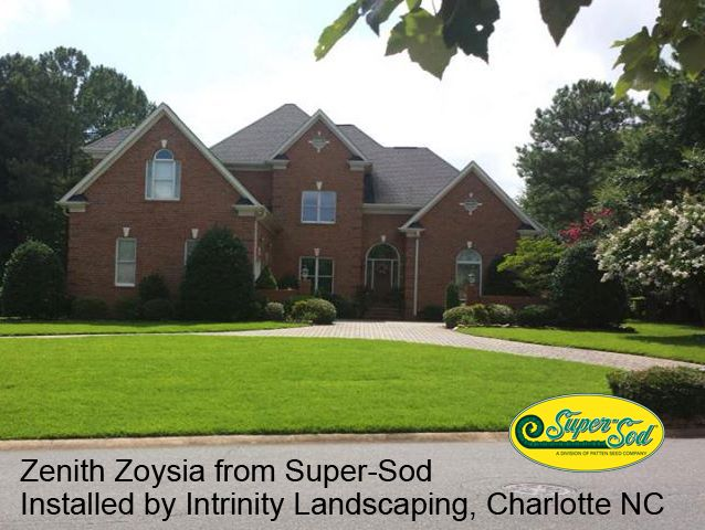 Zenith zoysia lawn installed only 2 weeks before the for Zenith garden rooms