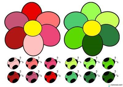 развиваем цветовосприятие у детей